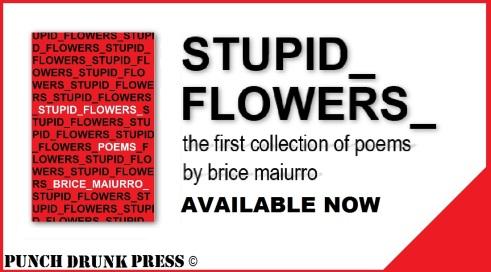 Stupid Flowers Promo