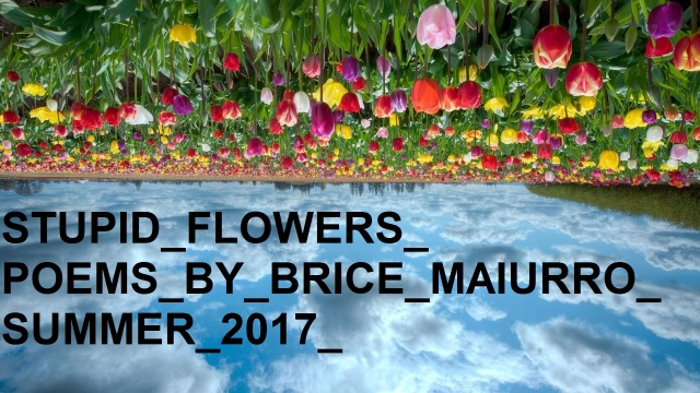 Stupid Flowers Announcement